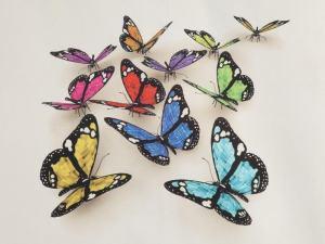 Butterflies 3D 3