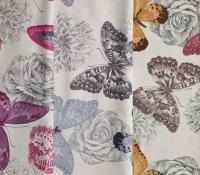 Butterflies 2D (new)