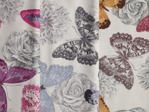 Butterflies 2D 1