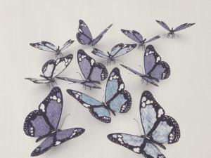 Butterflies 3D 4