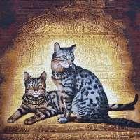 Egypt Cats